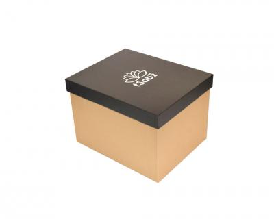 جعبه سخت مدل استاندارد کد TI.261.211.179.D171